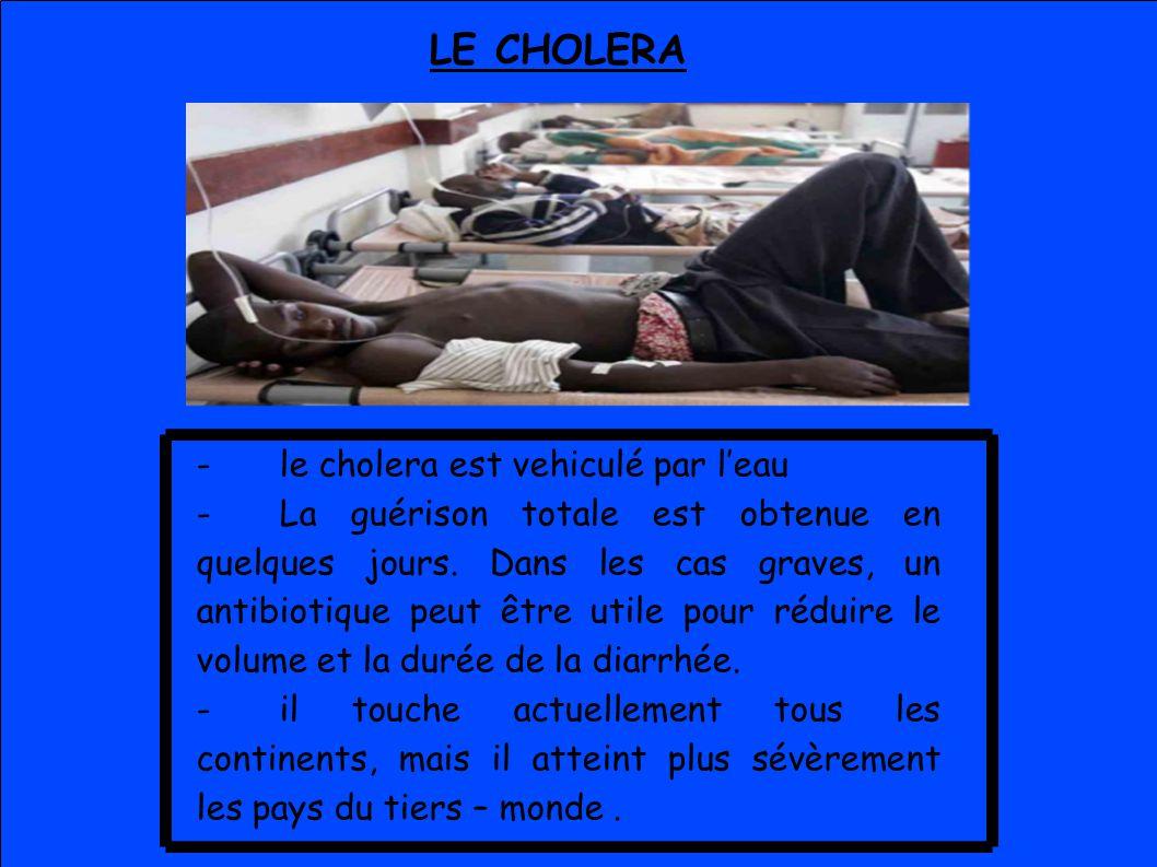 LE CHOLERA -le cholera est vehiculé par leau -La guérison totale est obtenue en quelques jours. Dans les cas graves, un antibiotique peut être utile p