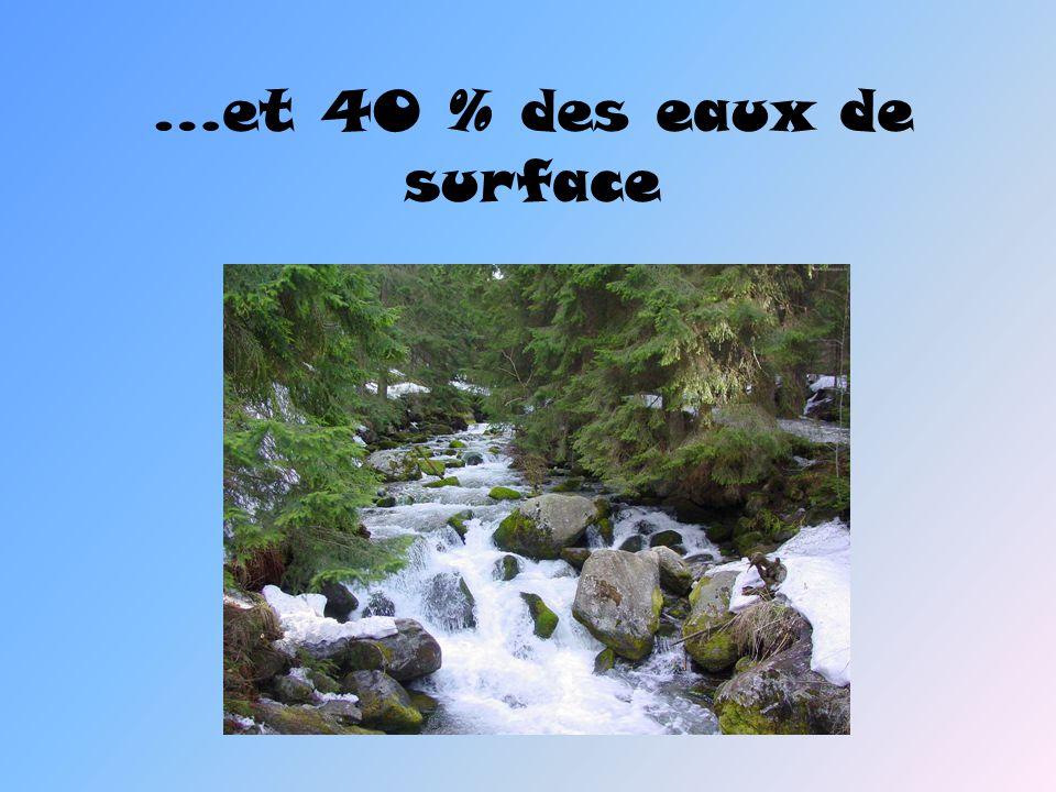 …et 40 % des eaux de surface