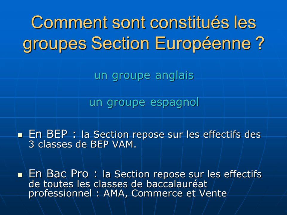 Comment sont constitués les groupes Section Européenne ? un groupe anglais un groupe espagnol En BEP : la Section repose sur les effectifs des 3 class