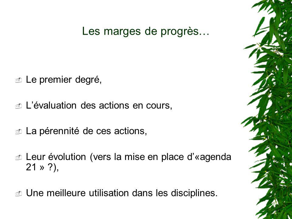 Les marges de progrès… Le premier degré, Lévaluation des actions en cours, La pérennité de ces actions, Leur évolution (vers la mise en place d«agenda