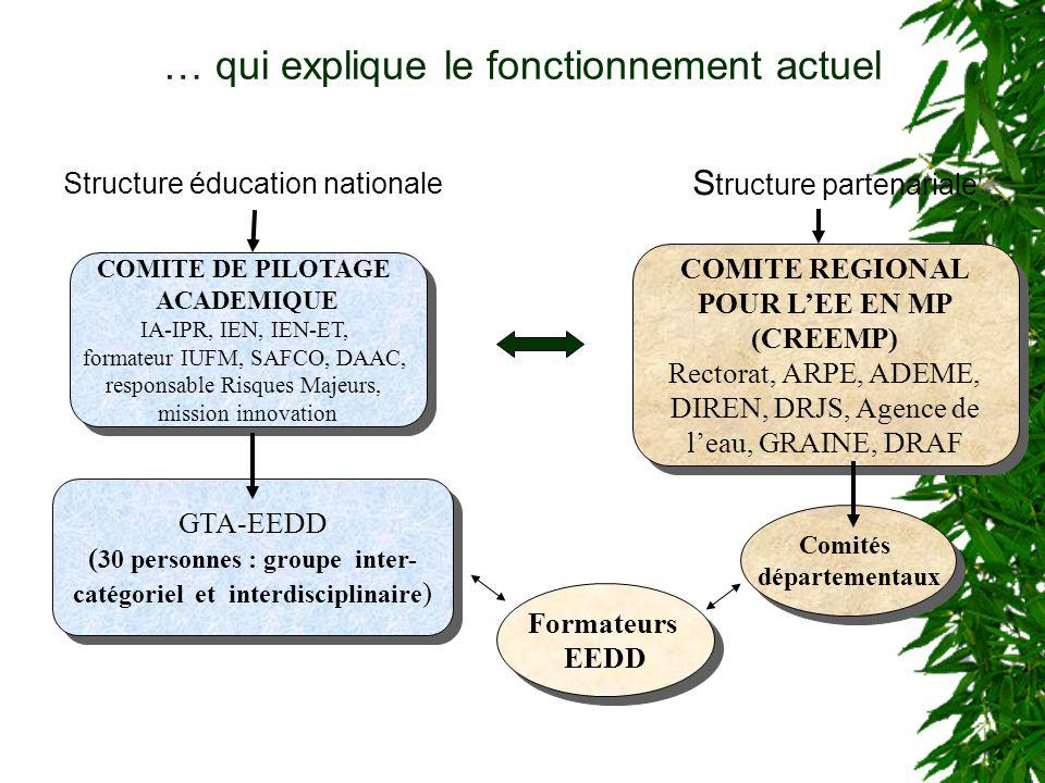 … qui explique le fonctionnement actuel S tructure partenariale COMITE REGIONAL POUR LEE EN MP (CREEMP) Rectorat, ARPE, ADEME, DIREN, DRJS, Agence de