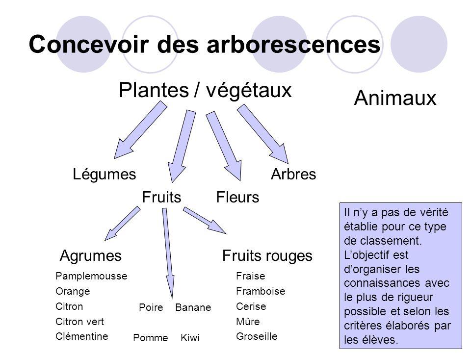 Concevoir des arborescences Plantes / végétaux Légumes Arbres Fruits Fleurs Agrumes Fruits rouges Il ny a pas de vérité établie pour ce type de classement.