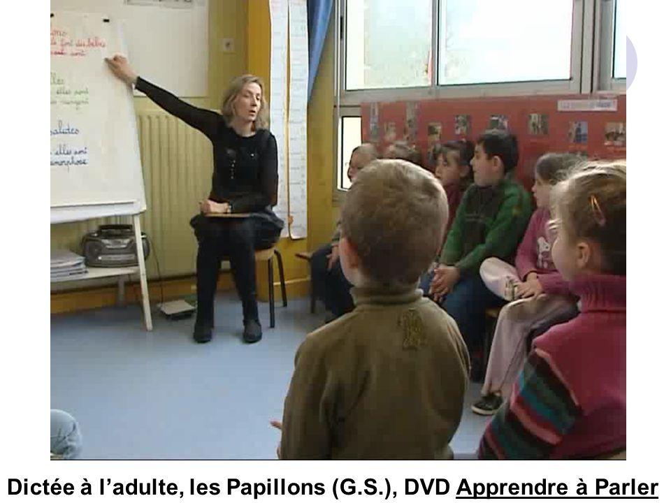 Dictée à ladulte, les Papillons (G.S.), DVD Apprendre à Parler