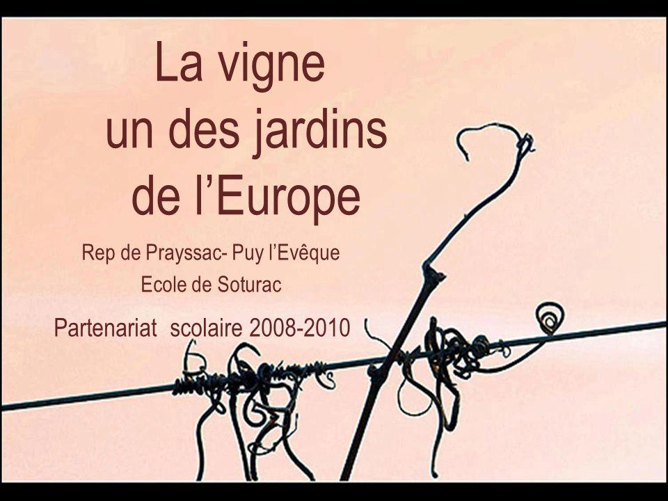 La vigne un des jardins de lEurope Rep de Prayssac- Puy lEvêque Ecole de Soturac Partenariat scolaire 2008-2010