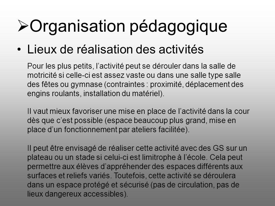 Organisation pédagogique Lieux de réalisation des activités Pour les plus petits, lactivité peut se dérouler dans la salle de motricité si celle-ci es