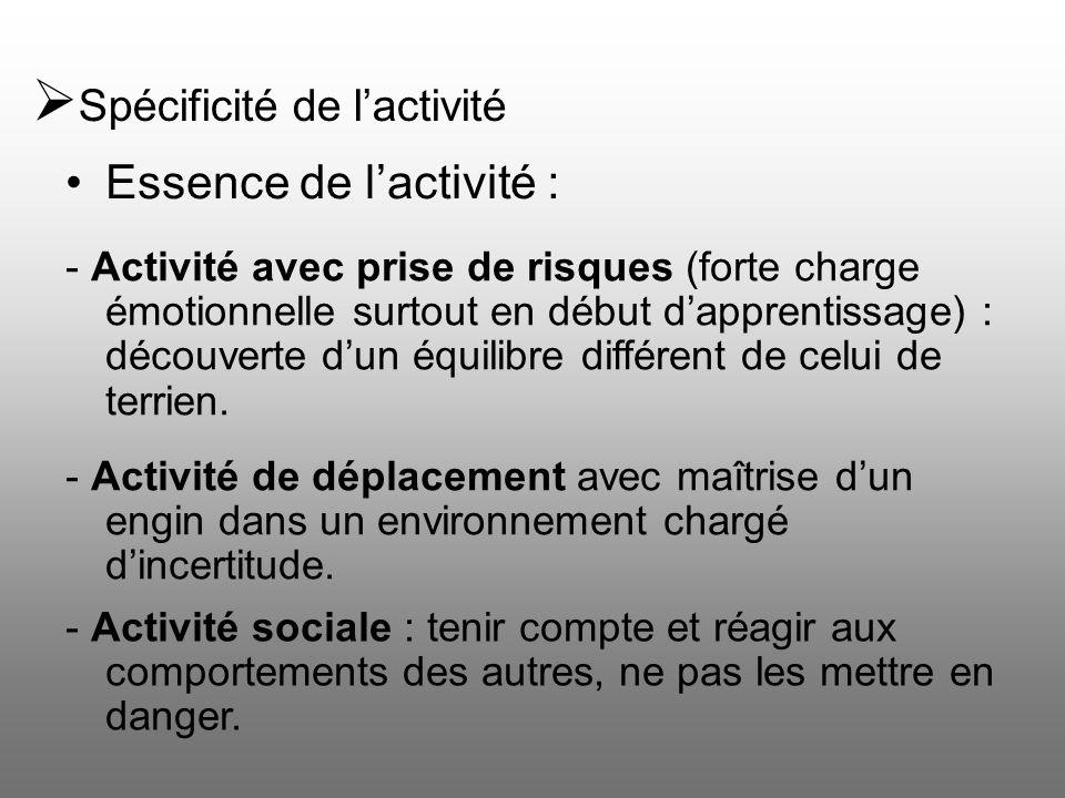 Spécificité de lactivité Essence de lactivité : - Activité avec prise de risques (forte charge émotionnelle surtout en début dapprentissage) : découve