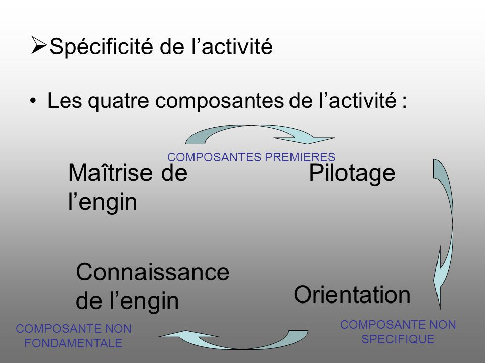 Spécificité de lactivité Les quatre composantes de lactivité : Maîtrise de lengin Pilotage Connaissance de lengin Orientation COMPOSANTES PREMIERES CO