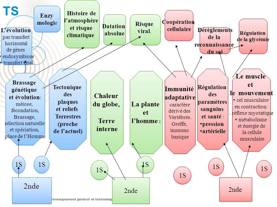Le nouveau lycée denseignement général et technologique TS 2nde 1S Brassage génétique et évolution : méiose, fécondation, Brassage, sélection naturell