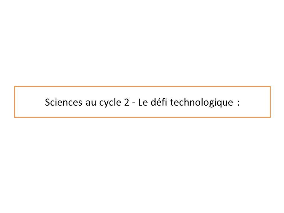 Objectifs de lanimation : Comprendre la démarche dinvestigation en sciences et technologie Mettre en œuvre cette démarche dans le cadre dun défi technologique.