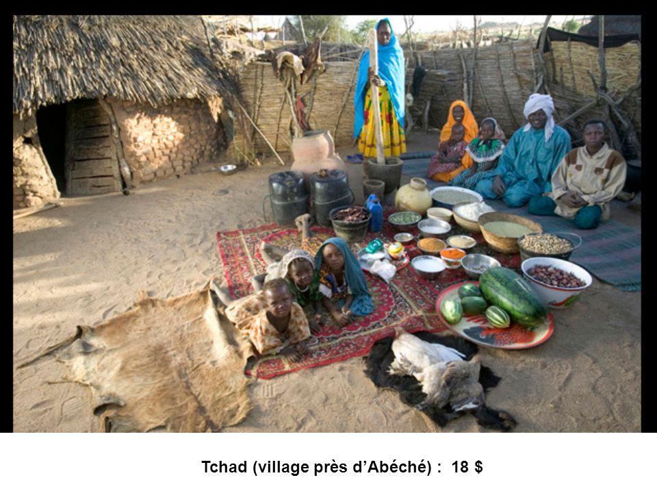 Tchad (village près dAbéché) : 18 $
