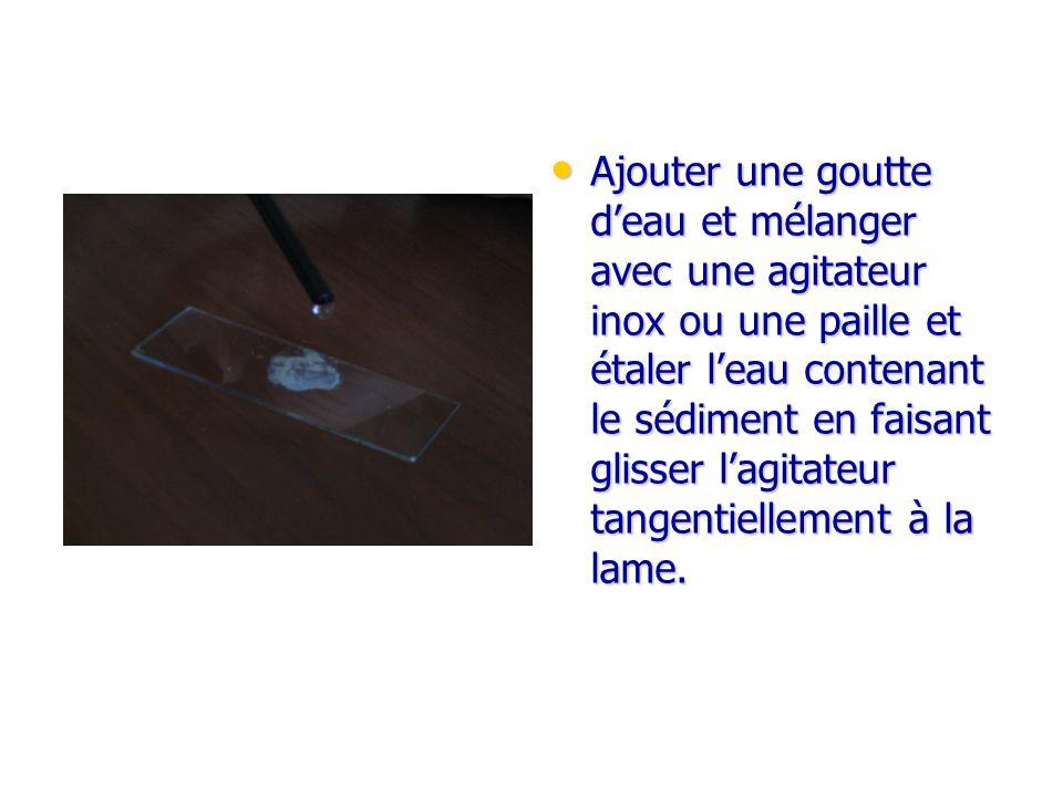 Ajouter une goutte deau et mélanger avec une agitateur inox ou une paille et étaler leau contenant le sédiment en faisant glisser lagitateur tangentie