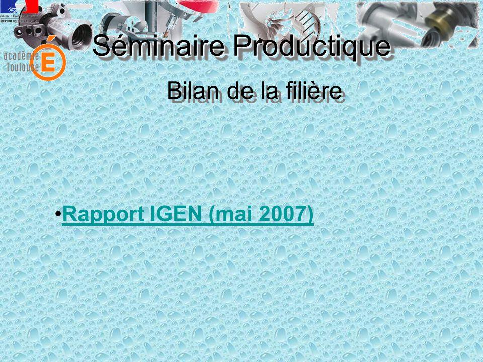 Séminaire Productique Rapport IGEN (mai 2007) Bilan de la filière