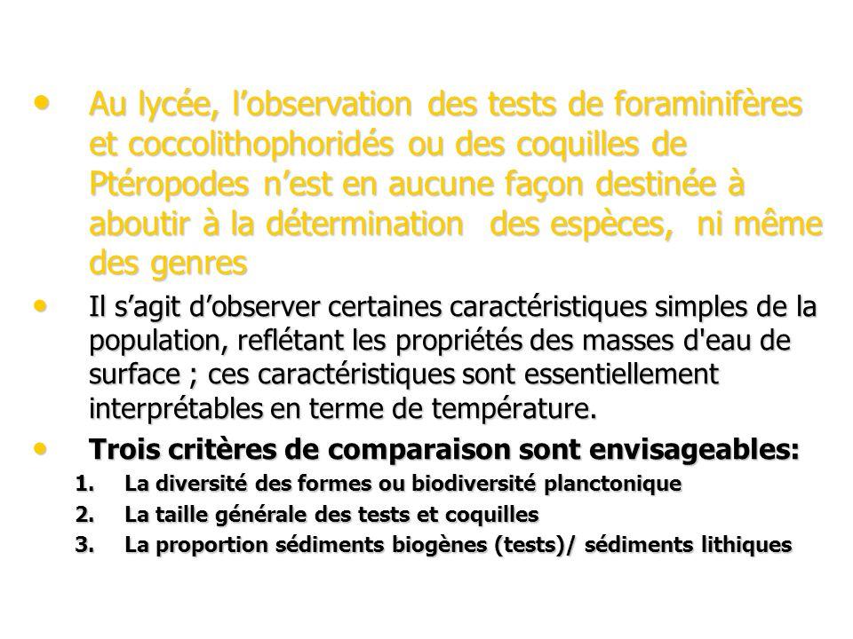 Au lycée, lobservation des tests de foraminifères et coccolithophoridés ou des coquilles de Ptéropodes nest en aucune façon destinée à aboutir à la détermination des espèces, ni même des genres Au lycée, lobservation des tests de foraminifères et coccolithophoridés ou des coquilles de Ptéropodes nest en aucune façon destinée à aboutir à la détermination des espèces, ni même des genres Il sagit dobserver certaines caractéristiques simples de la population, reflétant les propriétés des masses d eau de surface ; ces caractéristiques sont essentiellement interprétables en terme de température.