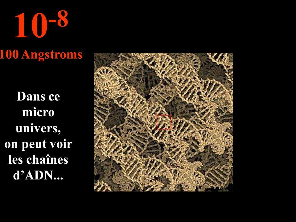 Dans ce micro univers, on peut voir les chaînes dADN... 10 -8 100 Angstroms