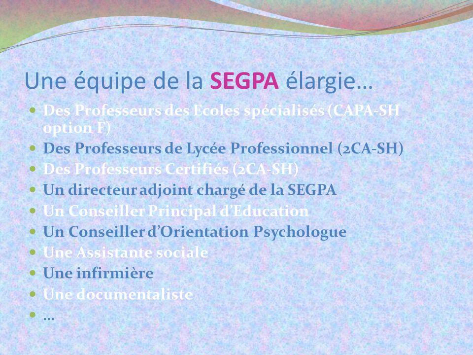 Une équipe de la SEGPA élargie… Des Professeurs des Ecoles spécialisés (CAPA-SH option F) Des Professeurs de Lycée Professionnel (2CA-SH) Des Professe