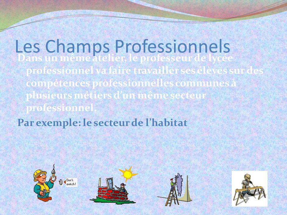 Les Champs Professionnels Dans un même atelier, le professeur de lycée professionnel va faire travailler ses élèves sur des compétences professionnelles communes à plusieurs métiers dun même secteur professionnel.