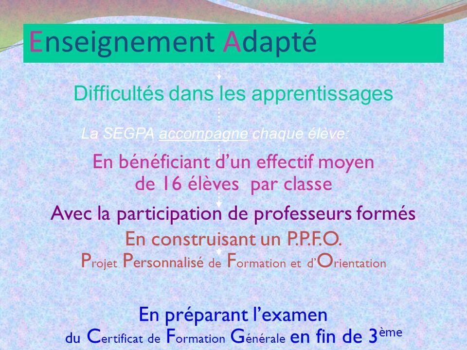Enseignement Adapté Difficultés dans les apprentissages La SEGPA accompagne chaque élève: En bénéficiant dun effectif moyen de 16 élèves par classe En