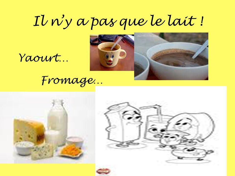 Il ny a pas que le lait ! Yaourt… Fromage…
