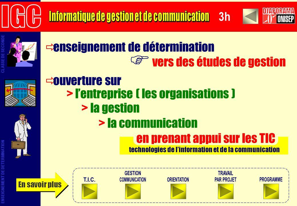 enseignement de détermination vers des études de gestion technologies de linformation et de la communication ouverture sur > lentreprise ( les organis