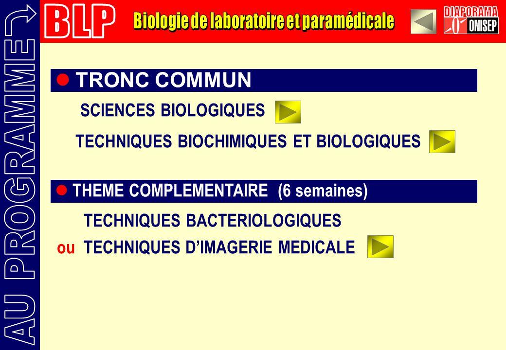 TRONC COMMUN (28 semaines) SCIENCES BIOLOGIQUES TECHNIQUES BIOCHIMIQUES ET BIOLOGIQUES THEME COMPLEMENTAIRE (6 semaines) TECHNIQUES BACTERIOLOGIQUES ou TECHNIQUES DIMAGERIE MEDICALE
