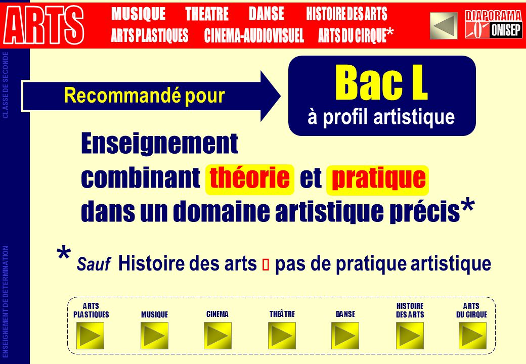Bac L à profil artistique Sauf Histoire des arts pas de pratique artistique * * Recommandé pour Enseignement combinant théorie et pratique dans un dom