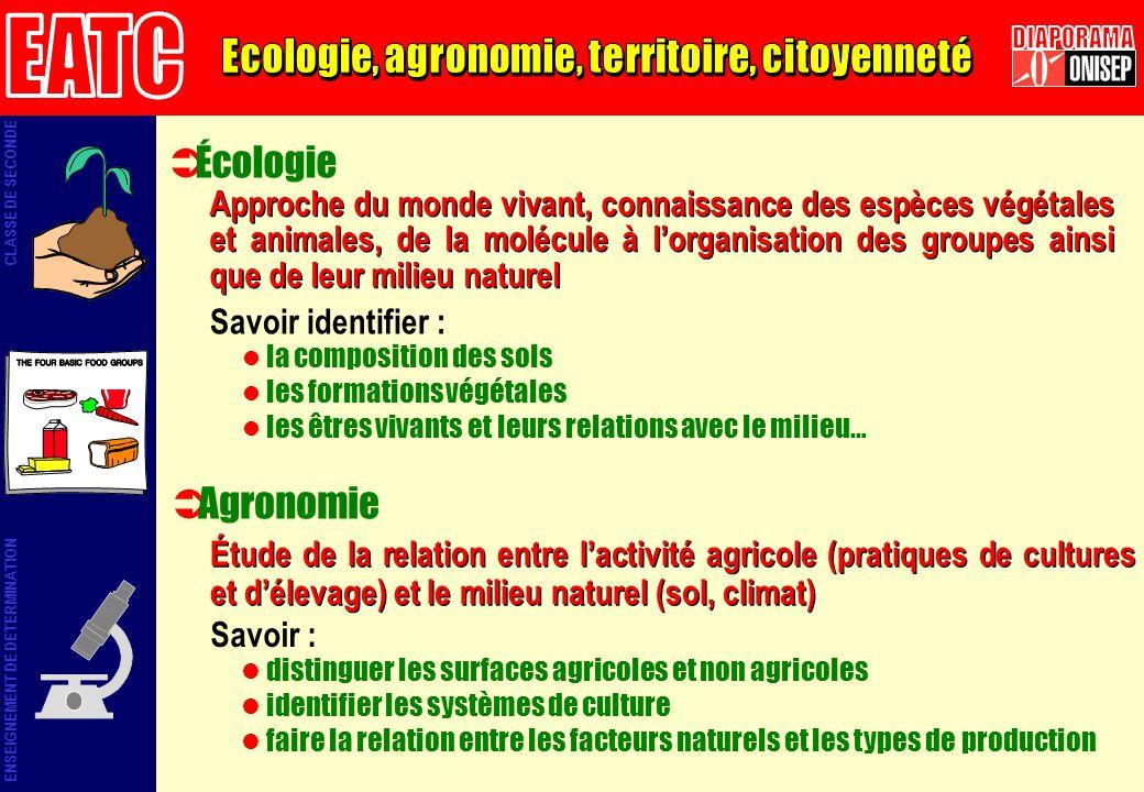 Écologie Savoir identifier : la composition des sols les formations végétales les êtres vivants et leurs relations avec le milieu… Approche du monde v