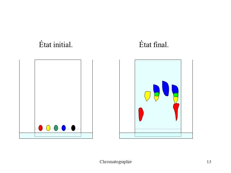 Chromatographie13 État initial.État final.