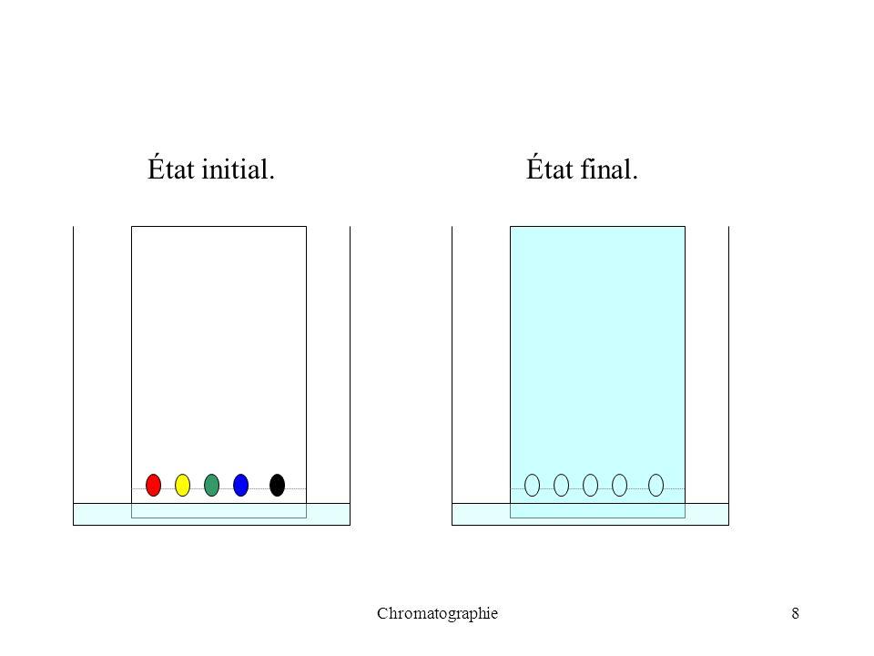 Chromatographie8 État initial.État final.