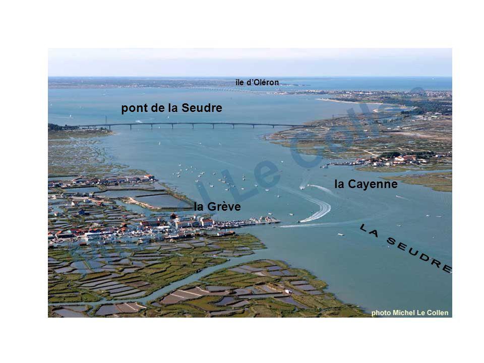pont de la Seudre la Grève la Cayenne île dOléron