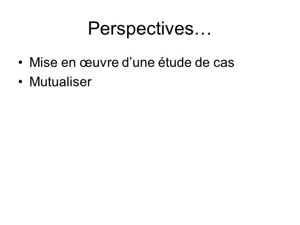 Perspectives… Mise en œuvre dune étude de cas Mutualiser