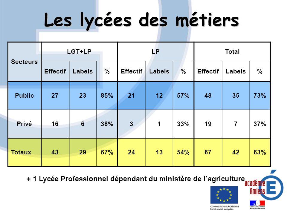 Les lycées des métiers Secteurs LGT+LPLPTotal EffectifLabels%EffectifLabels%EffectifLabels% Public272385%211257%483573% Privé16638%3133%19737% Totaux4
