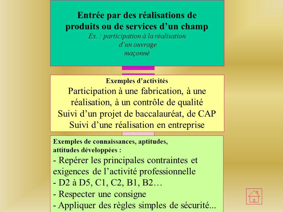 Entrée par des activités Professionnelles caractéristiques dun métier ou dune famille de métiers Ex : relation vendeur-client Exemples dactivités Obse