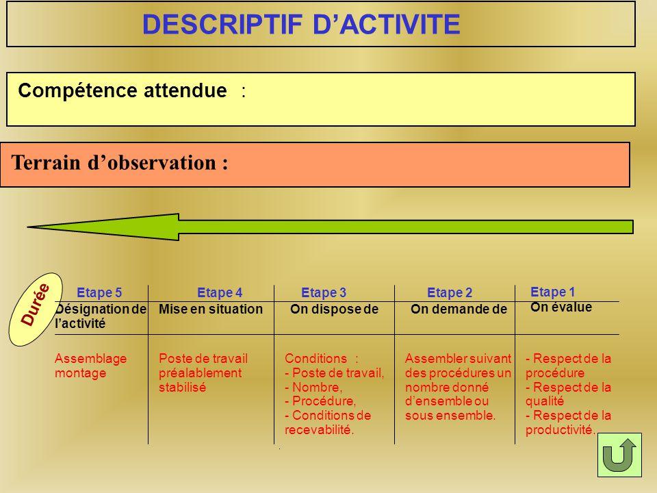 Les activités de formation