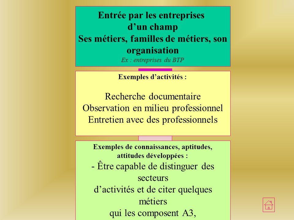 Approche dun champ professionnel Entrée par des activités Professionnelles caractéristiques dun métier ou dune famille de métiers Ex : relation vendeu