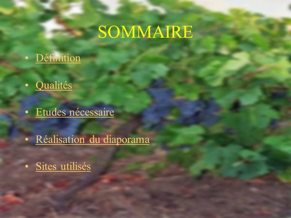 SOMMAIRE Définition Qualités Etudes nécessaire Réalisation du diaporama Sites utilisés