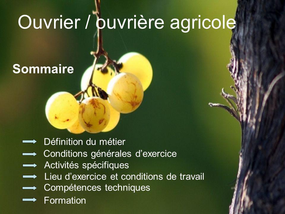 Définition du métier 1 - Réalise les tâches nécessaires à la production de fruits dans une exploitation arboricole ou viticole.