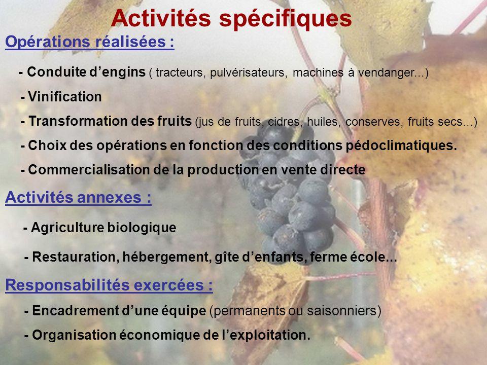 Activités spécifiques Opérations réalisées : - Conduite dengins ( tracteurs, pulvérisateurs, machines à vendanger...) - Vinification - Transformation