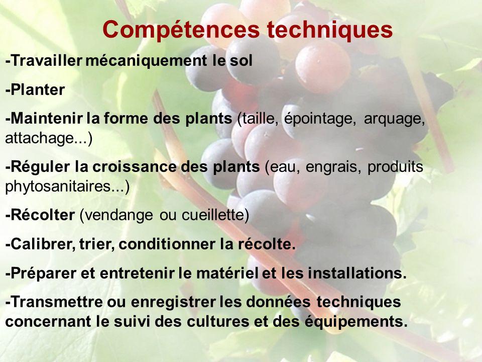 Compétences techniques -Travailler mécaniquement le sol -Planter -Maintenir la forme des plants (taille, épointage, arquage, attachage...) -Réguler la