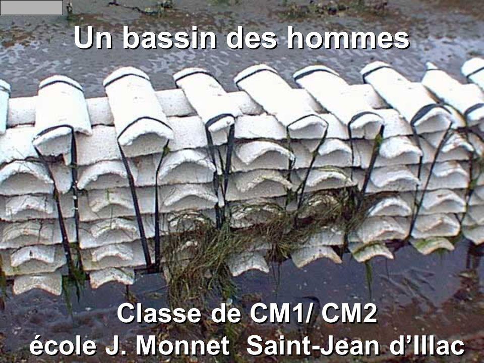 Un bassin des hommes Classe de CM1/ CM2 école J. Monnet Saint-Jean dIllac