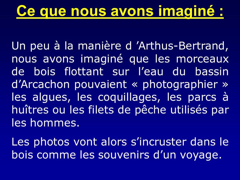 Ce que nous avons imaginé : Un peu à la manière d Arthus-Bertrand, nous avons imaginé que les morceaux de bois flottant sur leau du bassin dArcachon p