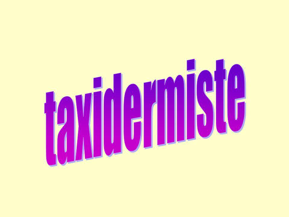 Taxidermiste: Son métier consiste à redonner apparence vitale et naturelle à des dépouilles danimaux.