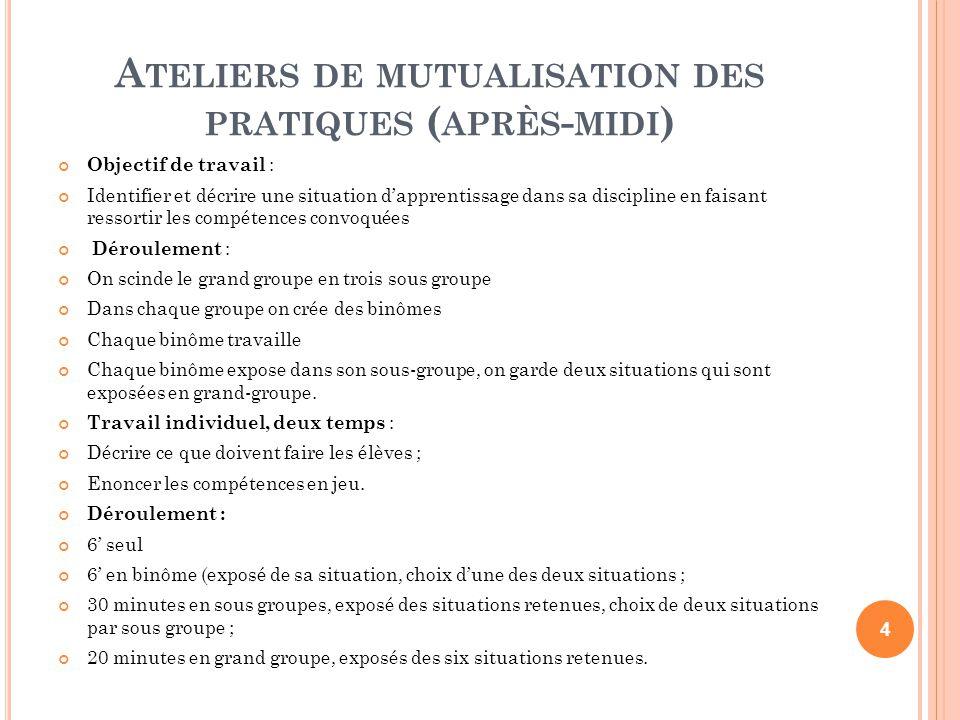 A TELIERS DE MUTUALISATION DES PRATIQUES ( APRÈS - MIDI ) Objectif de travail : Identifier et décrire une situation dapprentissage dans sa discipline