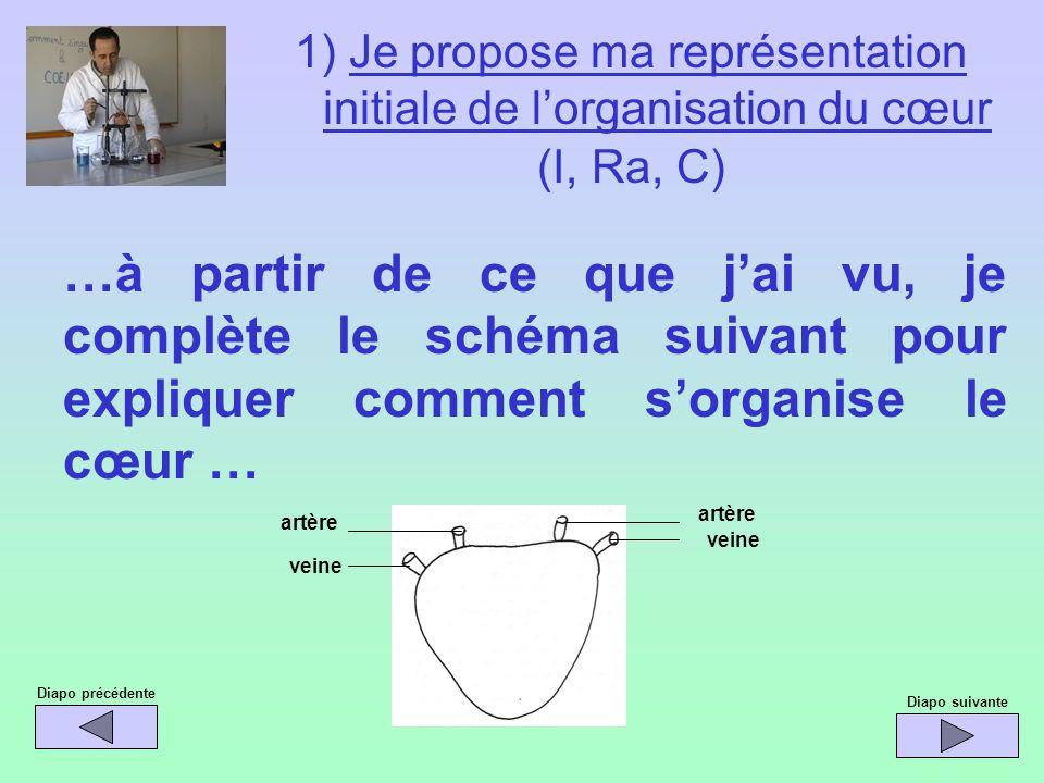 1) Je propose ma représentation initiale de lorganisation du cœur (I, Ra, C) …à partir de ce que jai vu, je complète le schéma suivant pour expliquer