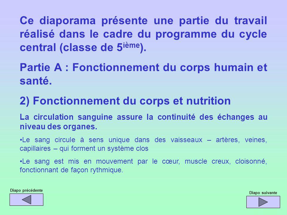 Ce diaporama présente une partie du travail réalisé dans le cadre du programme du cycle central (classe de 5 ième ). Partie A : Fonctionnement du corp