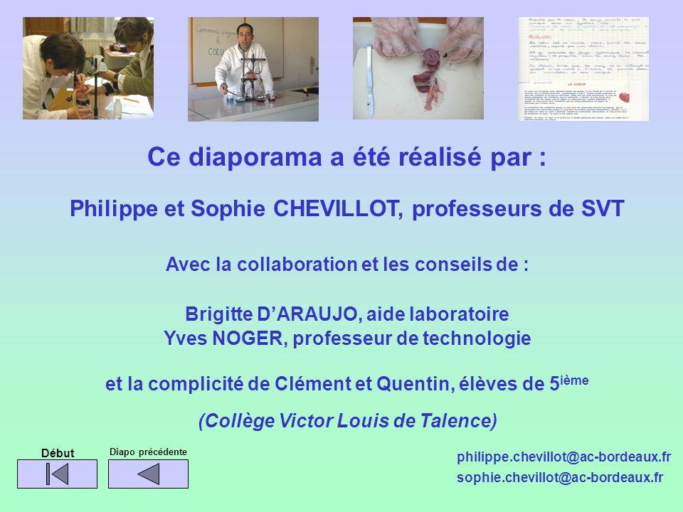 Ce diaporama a été réalisé par : Philippe et Sophie CHEVILLOT, professeurs de SVT Avec la collaboration et les conseils de : Brigitte DARAUJO, aide la