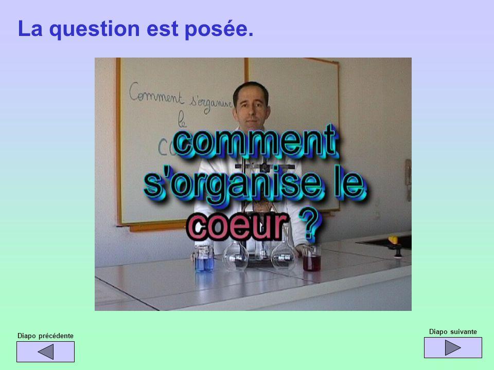 Diapo précédente Diapo suivante La question est posée.