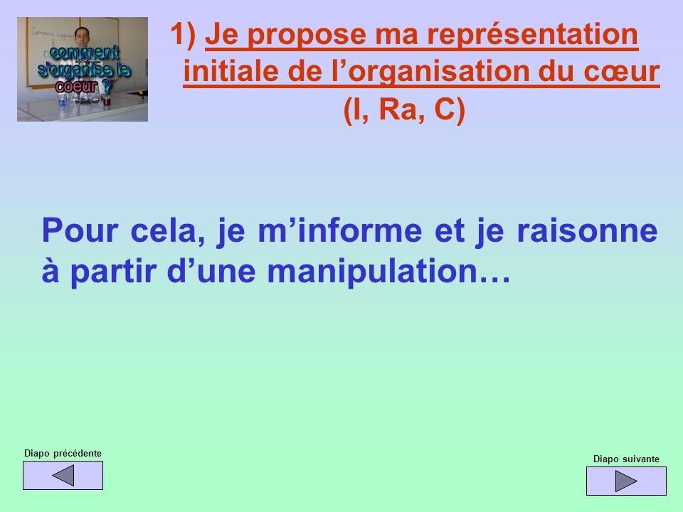 1) Je propose ma représentation initiale de lorganisation du cœur (I, Ra, C) Pour cela, je minforme et je raisonne à partir dune manipulation… Diapo p