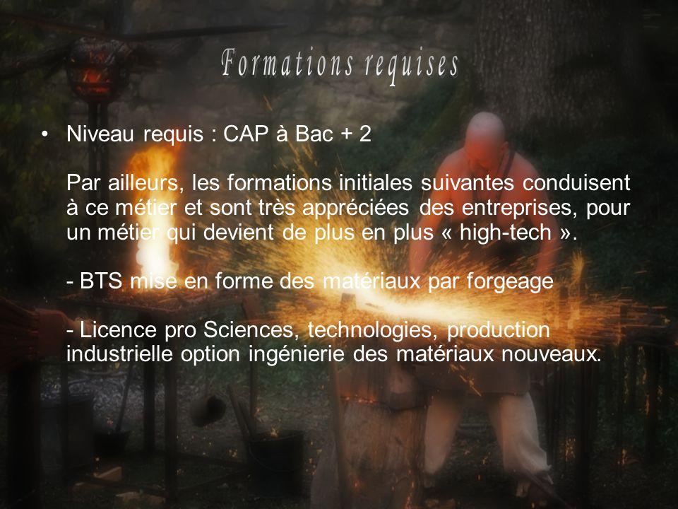 Niveau requis : CAP à Bac + 2 Par ailleurs, les formations initiales suivantes conduisent à ce métier et sont très appréciées des entreprises, pour un