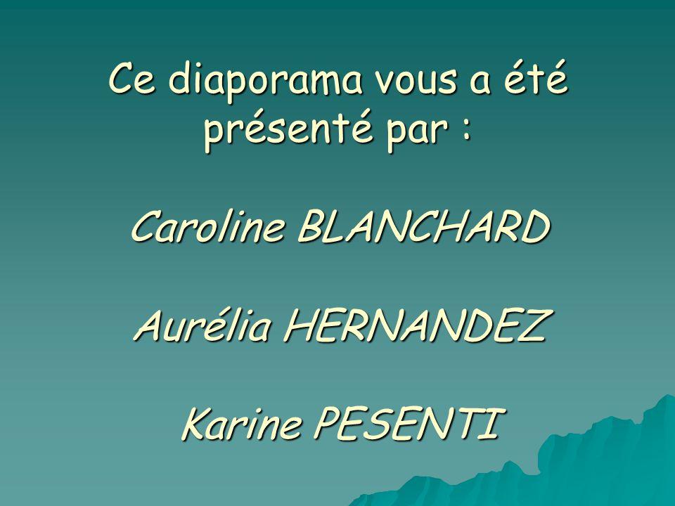 Ce diaporama vous a été présenté par : Caroline BLANCHARD Aurélia HERNANDEZ Karine PESENTI