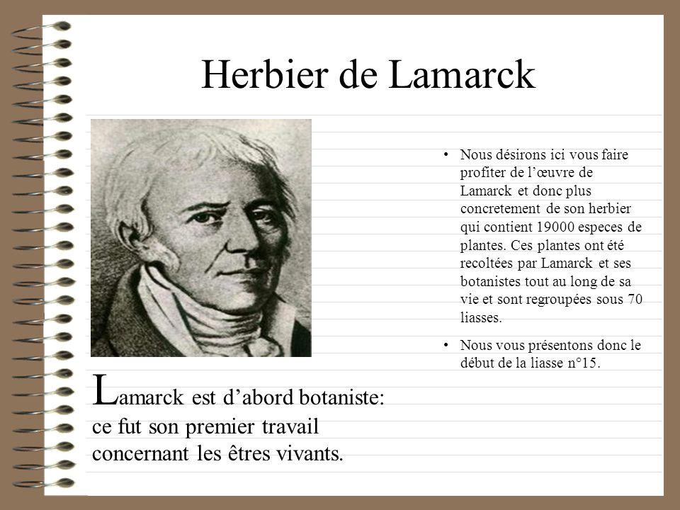 Herbier de Lamarck Nous désirons ici vous faire profiter de lœuvre de Lamarck et donc plus concretement de son herbier qui contient 19000 especes de p